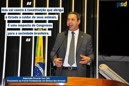 Dep. Ricardo Izar age contra matança de cães