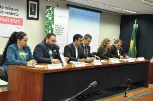 Blog do César Santos: Deputados vão criar lei que proíbe abate de jumentos no Brasil