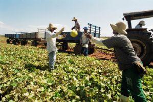 Projeto de Lei do Deputado Ricardo Izar Jr. amplia seguro-desemprego a trabalhadores rurais