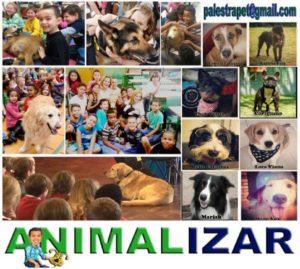 """PALESTRA PET – PROGRAMA ANIMALIZAR"""
