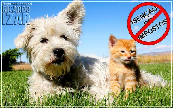 *Isenção de impostos para entidades de Proteção Animal*
