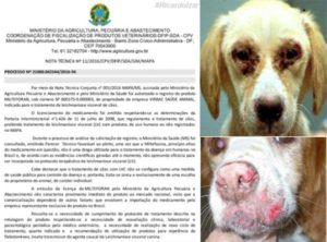 É OFICIAL – Medicamento que trata a leishmaniose canina é liberado no Brasil