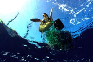 10 Imagens chocantes que refletem as conseqüências da poluição constante do meio ambiente