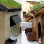 Untitled design4 5 768x402 1 150x150 - Alunos de engenharia constroem incríveis casas sustentáveis para cachorros