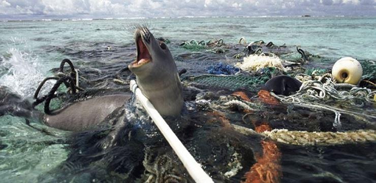 plastico oceano 01 - União Europeia avança para banir plástico descartável